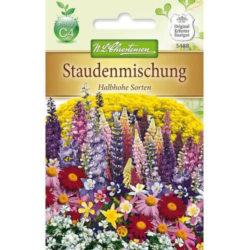 Flori perene, mix multicolor Chrestensen imagine 1 articol 78977