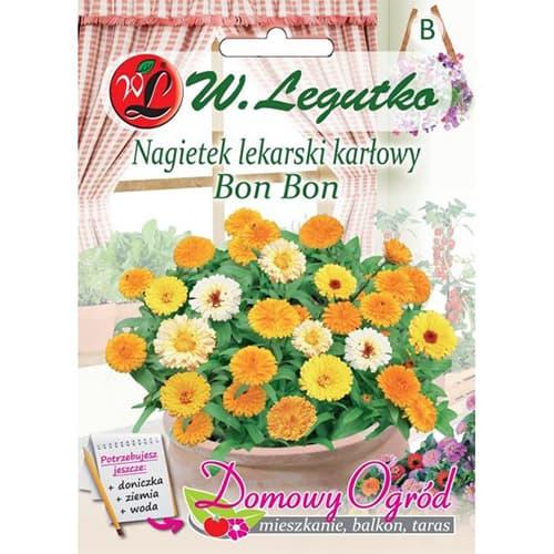 Gălbenele Bon Bon, mix multicolor Legutko imagine 1 articol 69660