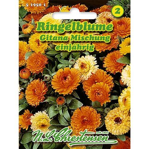 Gălbenele Gitana, mix multicolor Chrestensen imagine 1 articol 86127
