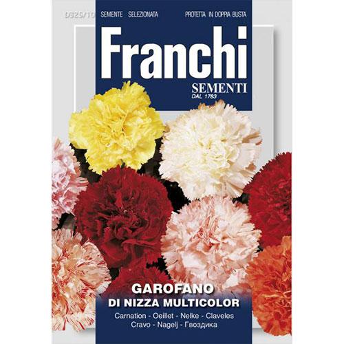 Garoafă de Nisa, mix multicolor imagine 1 articol 87317