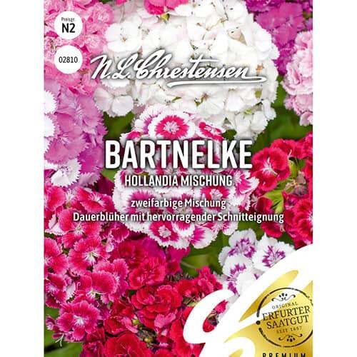 Garoafă turcească Hollandia, mix multicolor Chrestensen imagine 1 articol 86123