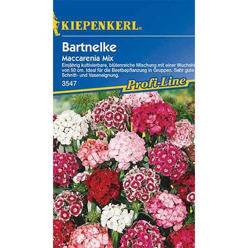 Garoafă turcească Maccarenia, mix multicolor Kiepenkerl imagine 1 articol 86252