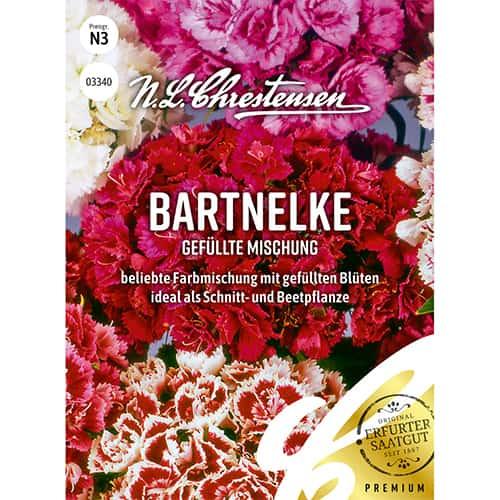 Garoafă turcească perenă, mix multicolor Chrestensen imagine 1 articol 86122