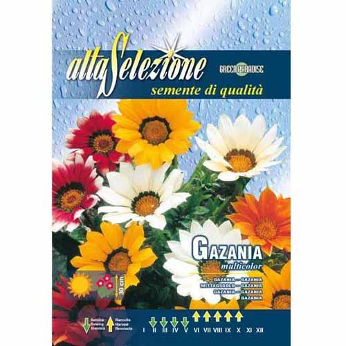 Gazania (Floarea comoară), mix multicolor Legutko imagine 1 articol 78554