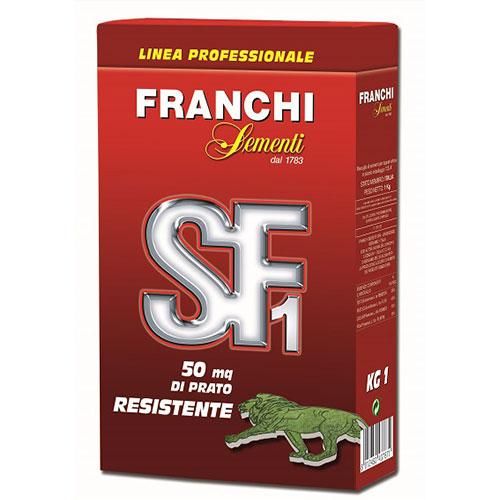 Gazon Green SF1 Resistente imagine 1 articol 87202