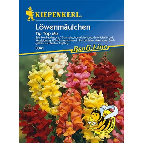 Gura leului Tip Top F1, mix multicolor Kiepenkerl imagine 1 articol 86288