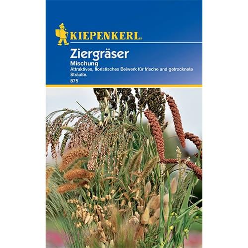 Iarbă ornamentală, mix multicolor Kiepenkerl imagine 1 articol 77413
