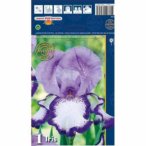 Iris germanica (Stânjenel) On Edge imagine 1 articol 70223