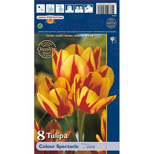 Lalele Colour Spectacle imagine 1 articol 67724