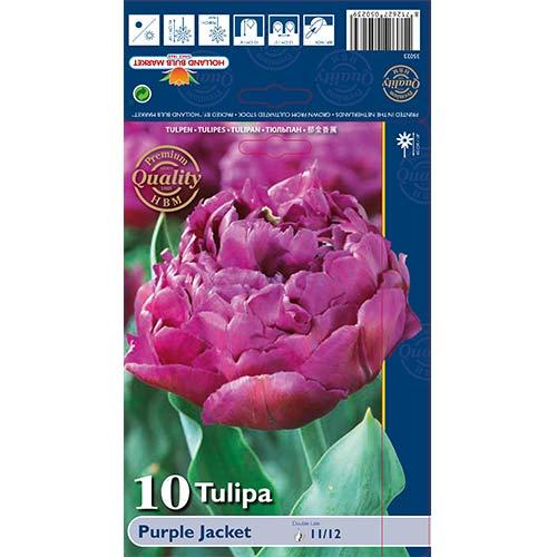 Lalele Purple Jacket imagine 1 articol 68040
