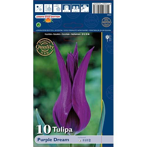Lalele Purple Dream imagine 1 articol 67480