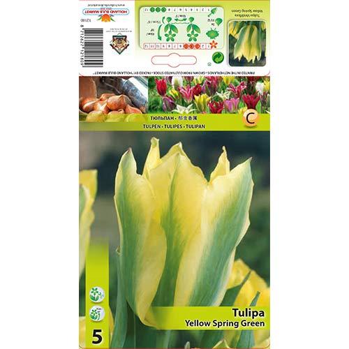 Lalele Yellow Spring Green imagine 1 articol 67735