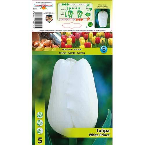 Lalele White Prince imagine 1 articol 67709