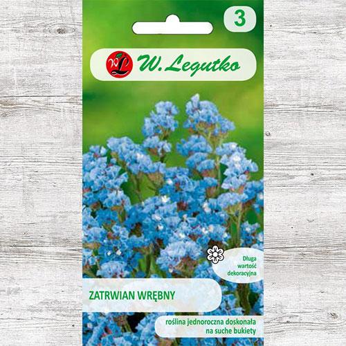 Limonium sinuatum (Sărăturică) albastru Legutko imagine 1 articol 87098