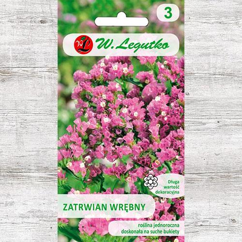 Limonium sinuatum (Sărăturică) roz Legutko imagine 1 articol 87096