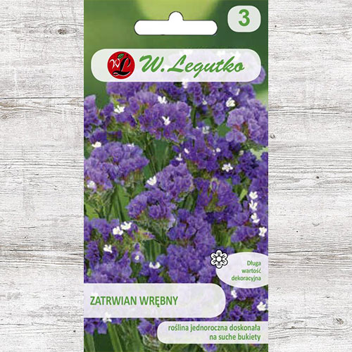 Limonium sinuatum (Sărăturică violet Legutko imagine 1 articol 87099