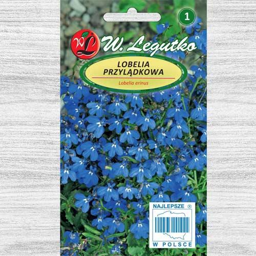 Lobelia curgătoare albastră Legutko imagine 1 articol 78573