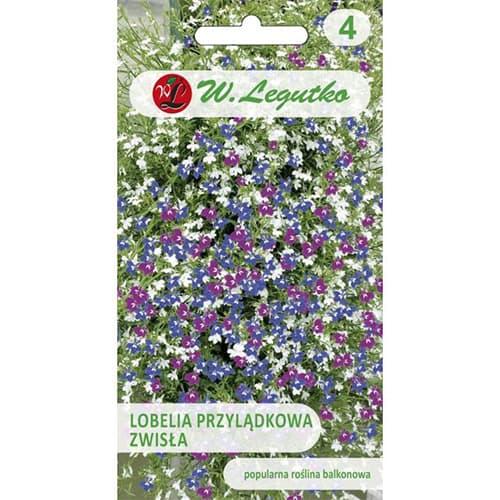 Lobelia curgătoare de ghiveci, mix multicolor Legutko imagine 1 articol 78623