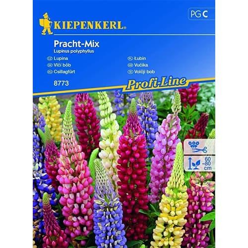 Lupin Splendid, mix multicolor Kiepenkerl imagine 1 articol 86292