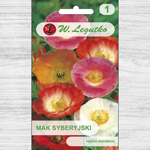 Mac siberian, mix multicolor Legutko imagine 1 articol 78608
