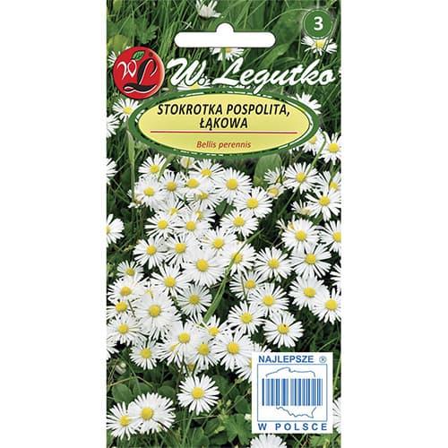 Margaretă comună (Flori comestibile) Legutko imagine 1 articol 86728
