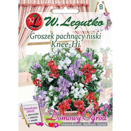 Mazăre dulce Knee-Hi Legutko imagine 1 articol 69642