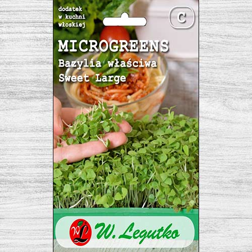 Microplante - Busuioc Sweet Large Legutko imagine 1 articol 78678