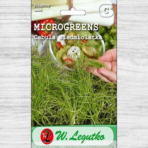 Microplante - Ceapă verde Legutko imagine 1 articol 78681