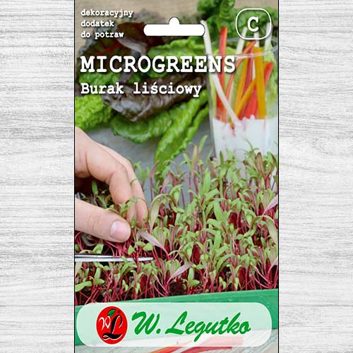 Microplante - Sfeclă Legutko imagine 1 articol 78680