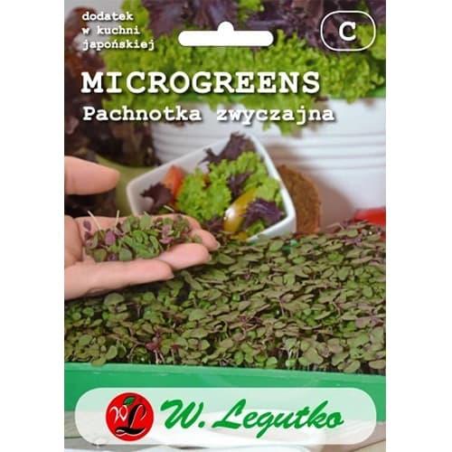 Microplante - Shiso (Perilla) Legutko imagine 1 articol 78695
