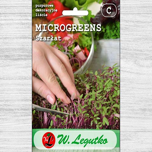 Microplante - Trompa elefantului Legutko imagine 1 articol 78702