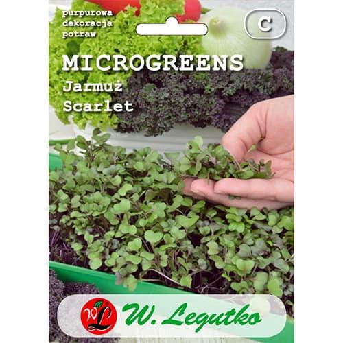 Microplante - Varză kale Scarlet Legutko imagine 1 articol 78686