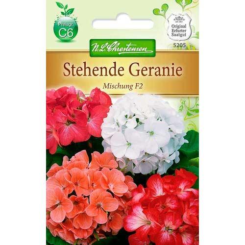 Mușcată Geranie F2, mix multicolor Chrestensen imagine 1 articol 78929