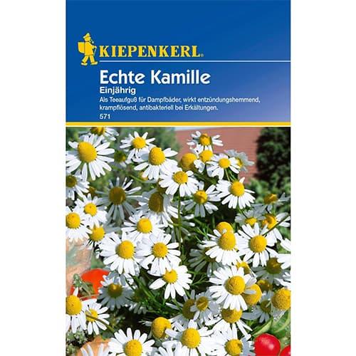 Mușețel anual Echte Kiepenkerl imagine 1 articol 77424