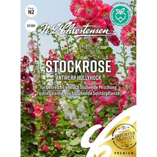 Nalbă de grădină Antwerp Hollyhock Chrestensen imagine 1 articol 86197