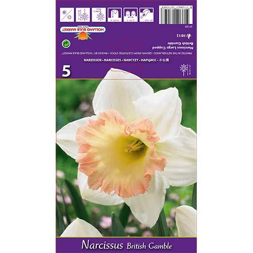 Narcise British Gamble imagine 1 articol 67642