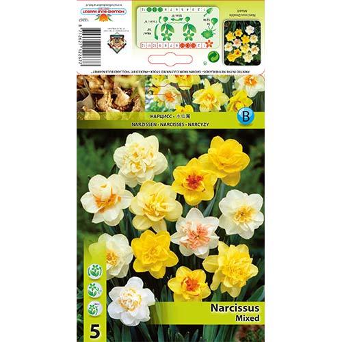 Narcise double mix multicolor imagine 1 articol 68073