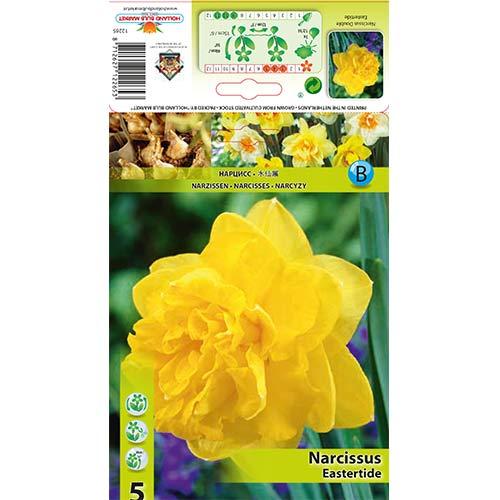 Narcise Eastertide imagine 1 articol 70280