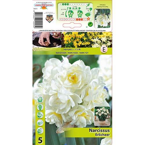 Narcise Erlicheer imagine 1 articol 70285