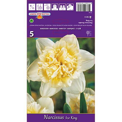 Narcise Ice King imagine 1 articol 67415