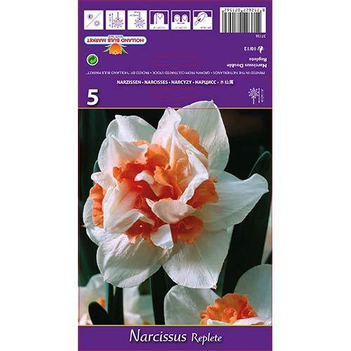 Narcise Replete imagine 1 articol 68071