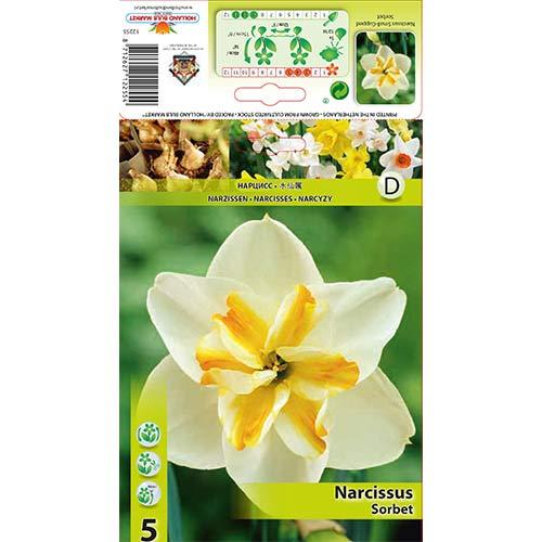 Narcise Sorbet imagine 1 articol 67430
