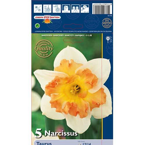 Narcise Taurus imagine 1 articol 68022