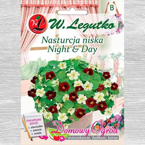 Năsturel Night & Day Legutko imagine 1 articol 69661