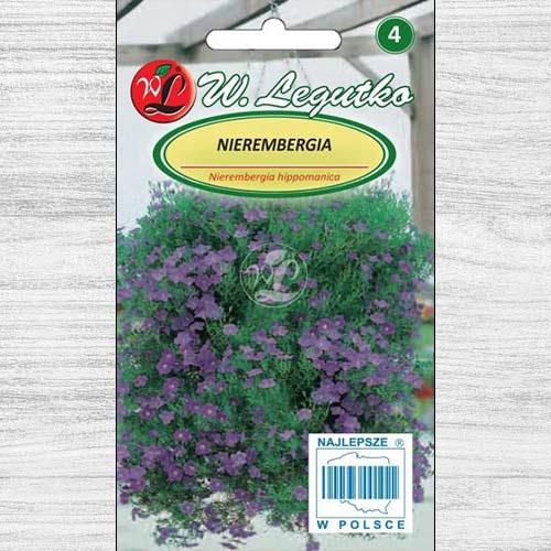 Nierembergia albastră Legutko imagine 1 articol 78624