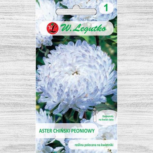 Ochiul boului tip bujor alb-albastru Legutko imagine 1 articol 78526