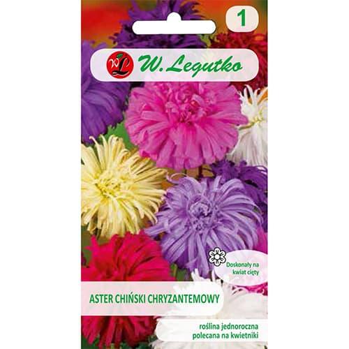 Ochiul boului tip crizantemă, mix multicolor Legutko imagine 1 articol 78511
