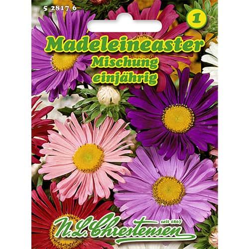 Ochiul boului tip crizantemă, mix multicolor Chrestensen imagine 1 articol 86132