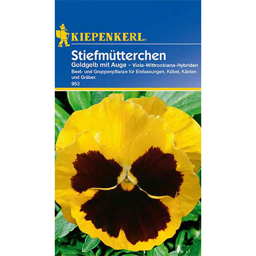 Panseluțe Golden Yellow eyed Kiepenkerl imagine 1 articol 86335