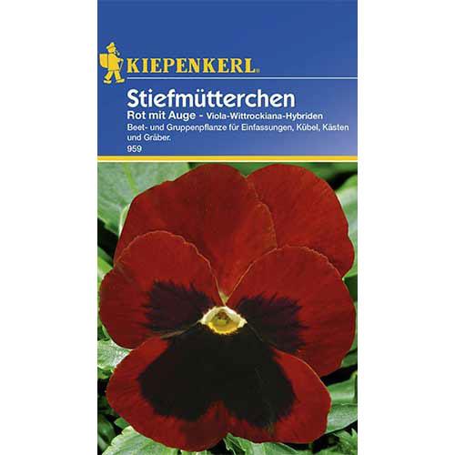 Panseluțe Red eyed Kiepenkerl imagine 1 articol 86350
